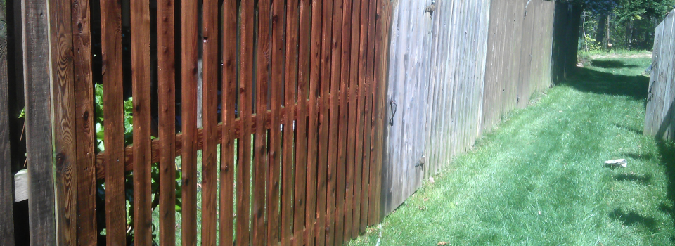 Cleaning-a-fence
