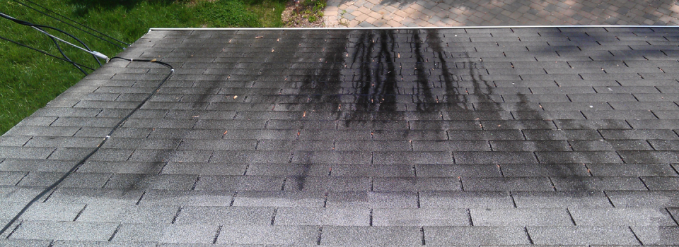 Cleaning-a-Roof